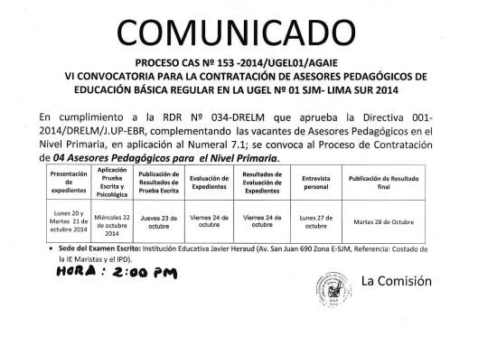 PROCESO CAS 153